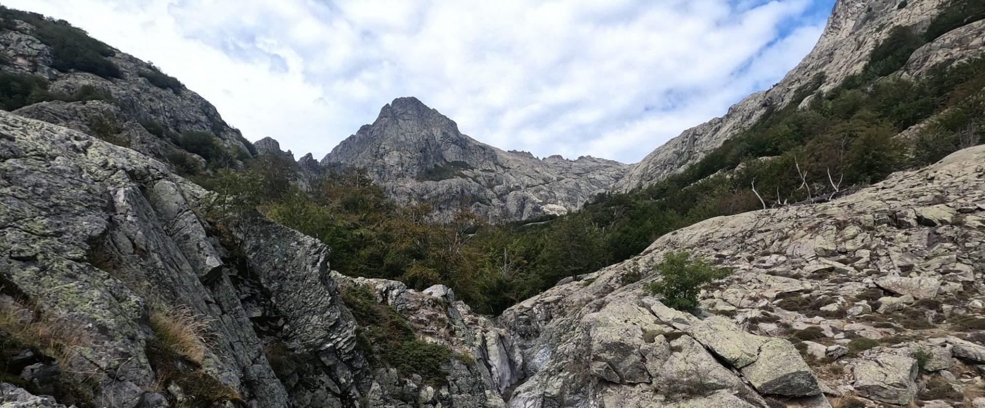 monte oro GR20 montagne corse foret vizzavona